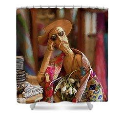 Don Quixote De La Mancha Shower Curtain