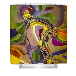 Don Quixote Shower Curtain