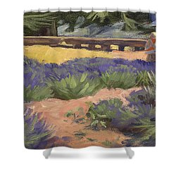 Don Read Painting Lavender Shower Curtain by Jane Thorpe