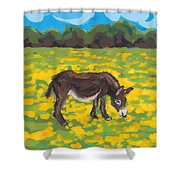 Donkey And Buttercup Field Shower Curtain by Sarah Gillard