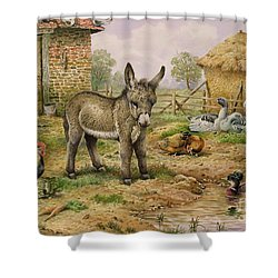Donkey And Farmyard Fowl  Shower Curtain by Carl Donner