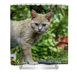 Dont Even Think About It 9430b Shower Curtain
