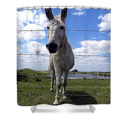 Shower Curtain featuring the photograph Don't Fence Me In 000  by Chris Mercer