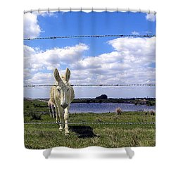 Shower Curtain featuring the photograph Don't Fence Me In 002 by Chris Mercer