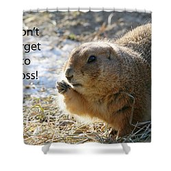 Dont Forget To Floss Shower Curtain by Karol Livote
