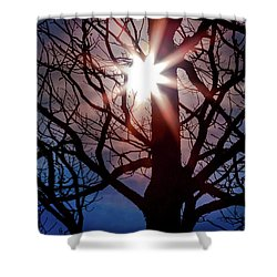 Shower Curtain featuring the photograph Don't Lose Sight Of It All by Karen Wiles