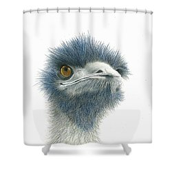 Shower Curtain featuring the drawing Dont Mess With Emu by Phyllis Howard