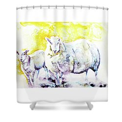 Don't Mess With My Lamb Shower Curtain