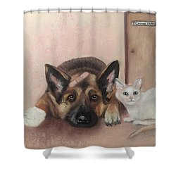 Don't Mess With The Cat  Shower Curtain