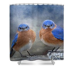 Don't Ruffle My Feathers Shower Curtain by Bonnie Barry
