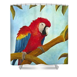 Shower Curtain featuring the painting Dont Ruffle My Feathers by Phyllis Howard