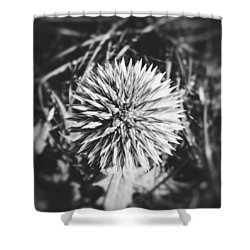 Don't Touch Me Shower Curtain by Karen Stahlros
