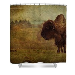 Doo Doo Valley Shower Curtain