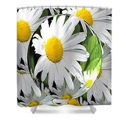 Doo Wop Daisies Shower Curtain