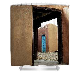 Door Through Door Shower Curtain