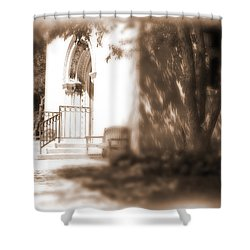 Door To Yesterday Shower Curtain by Lauren Radke