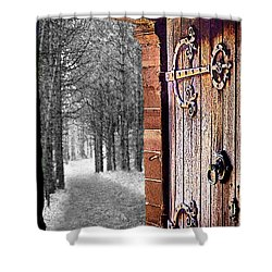 Doorway To Hadrian's Wood Shower Curtain
