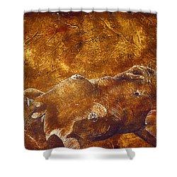 Dorothy Iv Shower Curtain by Richard Hoedl