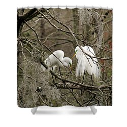 Doting Couple Shower Curtain
