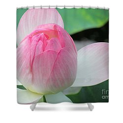 Dotus On The Lotus  Shower Curtain