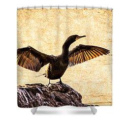 Double-crested Cormorant Shower Curtain by Bob Orsillo
