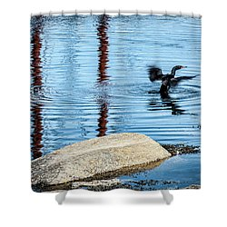 Shower Curtain featuring the photograph Double-crested Cormorant by Daniel Hebard