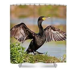 Shower Curtain featuring the photograph Double-crested Cormorant by Gary Lengyel