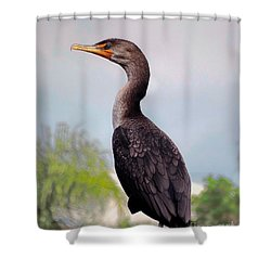 Double Crested Cormorant Shower Curtain