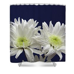 Double Dahlia Shower Curtain