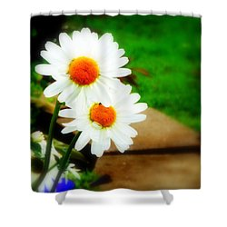 Double Daisy Shower Curtain