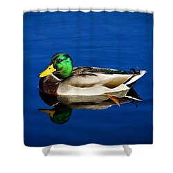 Double Duck Shower Curtain