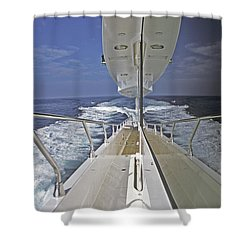Double Image Shower Curtain