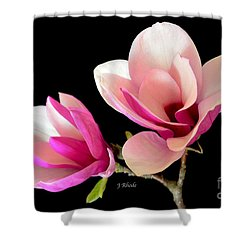 Double Magnolia Blooms Shower Curtain