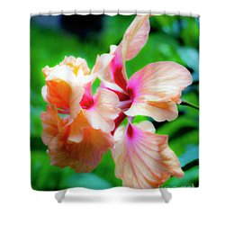 Double Peach Hibiscus Two Shower Curtain