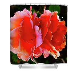 Double Rose Shower Curtain by Mark Blauhoefer