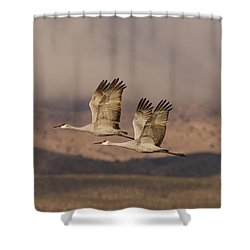 Double Sandhills In The New Mexico Sky Shower Curtain