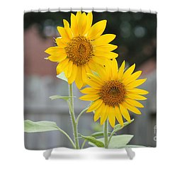 Double Sunflowers Shower Curtain