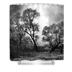Double Tree Shower Curtain