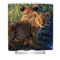 Shower Curtain featuring the photograph Double Trouble by Karen Lewis