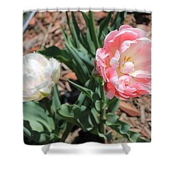 Double Tulip Shower Curtain