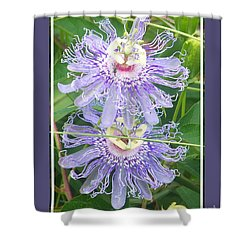 Double Up Flowers Framed Shower Curtain