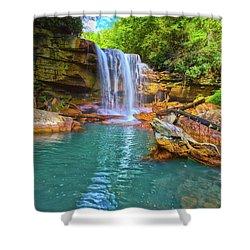 Douglas Falls 2 Shower Curtain