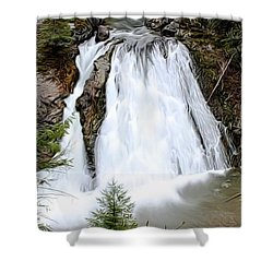 Douglas Falls  Shower Curtain