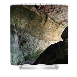 Dove In Flight Shower Curtain by Amanda Barcon