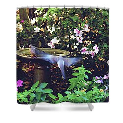 Shower Curtain featuring the photograph Dove In Flight by Debra Crank