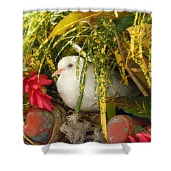 Dove In Jamaica Shower Curtain