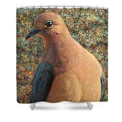 Dove Shower Curtain by James W Johnson