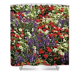 Dow Gardens Color Explosion 1 Shower Curtain