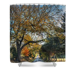 Down A Berger Lane Shower Curtain by William Fields