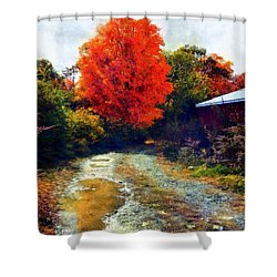 Shower Curtain featuring the photograph Down A Country Road - Autumn by Janine Riley